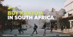 Buy Kratom in South Africa
