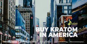 Buy Kratom in United States (USA)