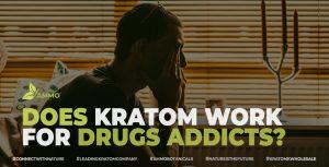 Drugs Healing With Kratom